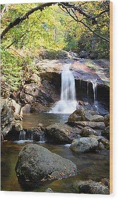 Thompson Brook Falls Wood Print by Brett Pelletier