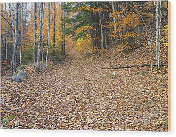 Thornton Gore Road - Thornton New Hampshire Wood Print by Erin Paul Donovan