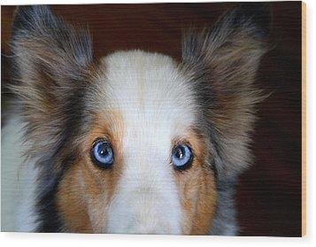 Those Eyes Wood Print by Kathryn Meyer