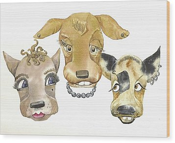 Those Girls Are Dogs. Wood Print by Donna Acheson-Juillet