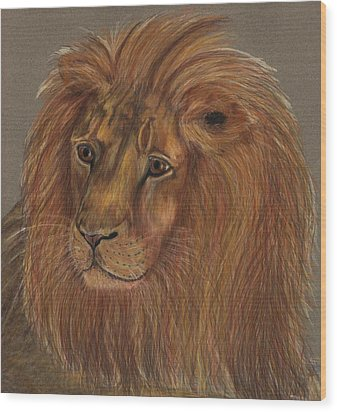 Wood Print featuring the drawing Thoughtful Lion 2 by Stephanie Grant