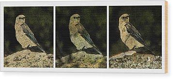 Three Birds Wood Print by John Goyer