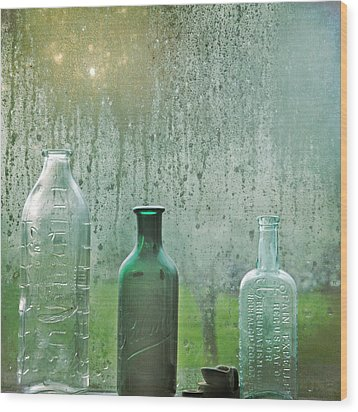Three Bottles Wood Print by Sally Banfill