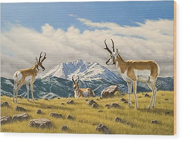 Three Bucks On The Ridge Wood Print by Paul Krapf
