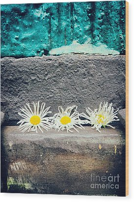Wood Print featuring the photograph Three Daisies Stuck In A Door by Silvia Ganora