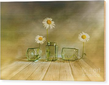 Three Daisies Wood Print by Veikko Suikkanen