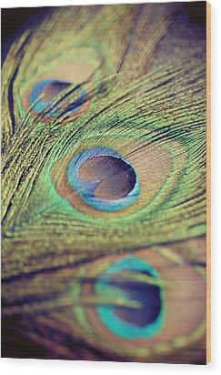 Three Feathers Wood Print