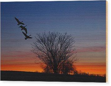 Three Geese At Sunset Wood Print by Raymond Salani III