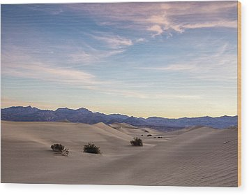 Three In The Sand Wood Print by Jon Glaser
