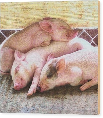 Three Little Piglets - Square Wood Print