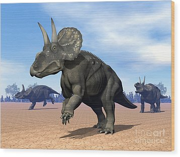Three Nedoceratops In The Desert Wood Print by Elena Duvernay