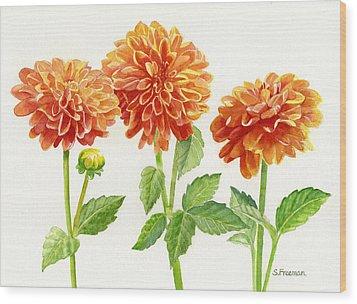 Three Orange Dahlias Wood Print by Sharon Freeman