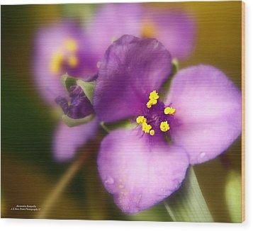 Three Petals Of Purple Wood Print by Alexandra  Rampolla