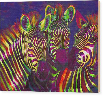 Three Rainbow Zebras Wood Print by Jane Schnetlage
