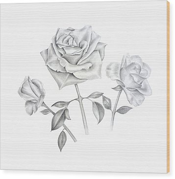 Wood Print featuring the drawing Three Roses by Elizabeth Lock