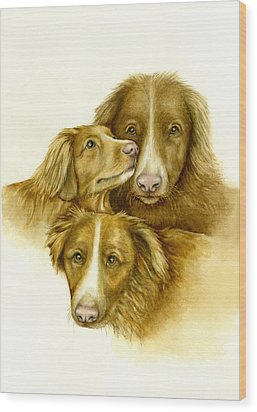 Three Toller Dogs Wood Print by Nan Wright