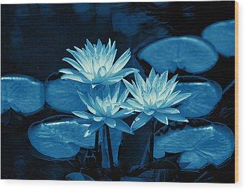 Three Water Lilies In Cyan Wood Print by Linda Phelps