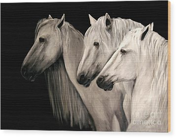 Three White Horses Wood Print by Nancy Bradley