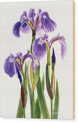 Three Wild Irises On White Wood Print by Sharon Freeman
