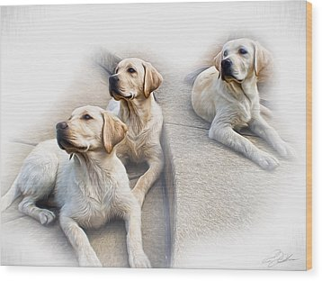 Three's Company Wood Print by Peter Chilelli