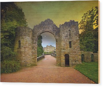 Through The Arch Wood Print by Roy  McPeak