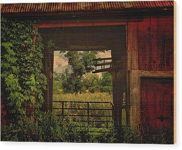 Through The Barn Door Wood Print