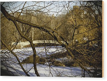 Through The Branches 2 - Central Park - Nyc Wood Print by Madeline Ellis