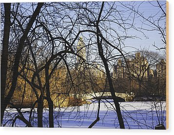 Through The Branches 3 - Central Park - Nyc Wood Print by Madeline Ellis