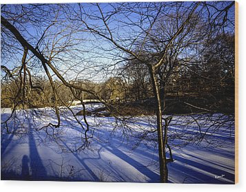 Through The Branches 4 - Central Park - Nyc Wood Print by Madeline Ellis