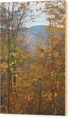 Wood Print featuring the photograph Through The Leaves by Alicia Knust