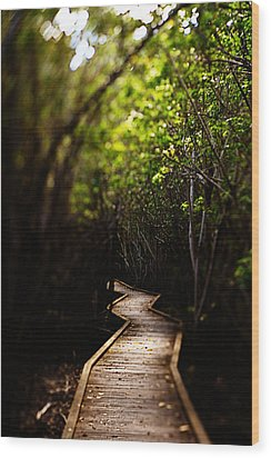 Through The Mangroves Wood Print