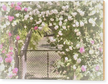 Through The Rose Arbor Wood Print by Elaine Teague