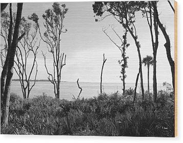 Through The Trees Wood Print by Thomas Leon