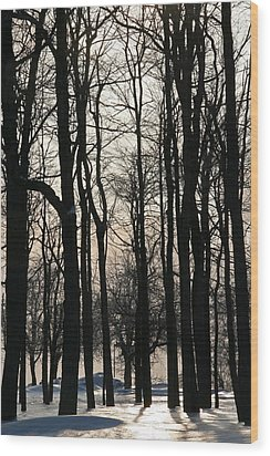 Through The Winter Trees Wood Print by Heather Allen