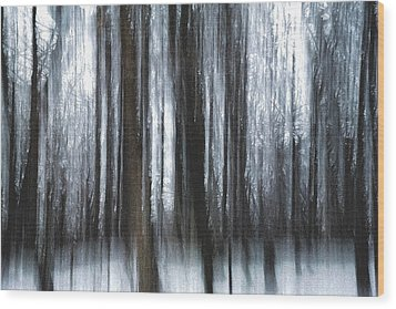 Wood Print featuring the photograph Through The Woods by Steven Huszar