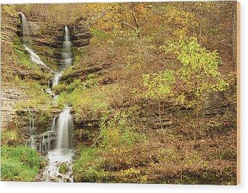 Thunder Falls Wood Print by Gregory Ballos