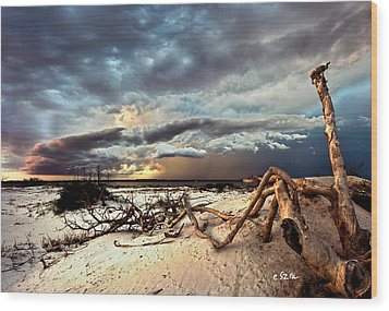 Wood Print featuring the photograph Thunder Storm Clouds Desert Landscape Sand Dune Art Prints by Eszra Tanner