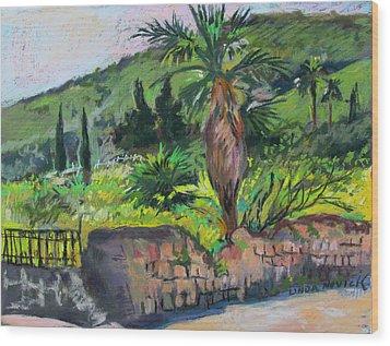 Wood Print featuring the painting Tiberius Israel by Linda Novick