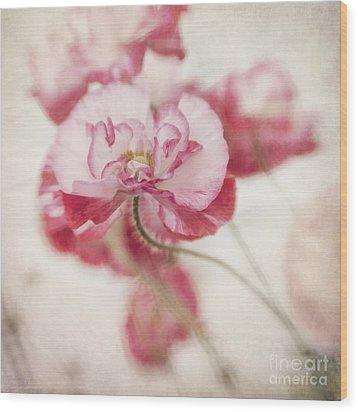 Tickle Me Pink Wood Print by Priska Wettstein