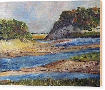 Tidal Dunes In Provincetown Wood Print by Michael Helfen