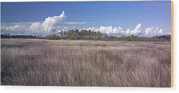 Wood Print featuring the photograph Tidal Marsh On Roanoke Island by Greg Reed