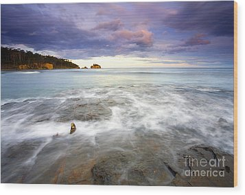 Tide Covered Pavement Wood Print by Mike  Dawson