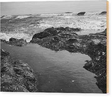 Tide Pool Wood Print by Tarey Potter