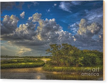 Tide Water Wood Print by Marvin Spates