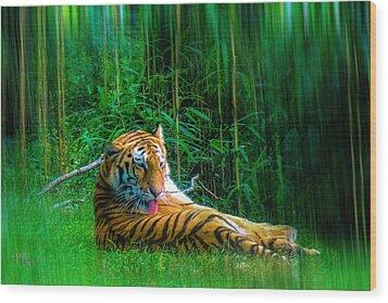 Tidy Tiger Strips Wood Print