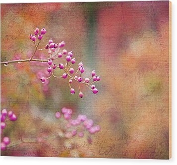 Tie Dyed Berries In Pink Orange And Gold  Wood Print