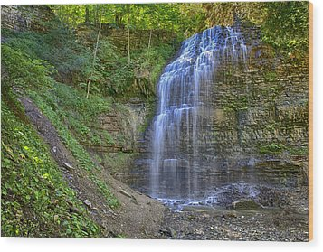 Wood Print featuring the photograph Tiffany Falls In Summer by Gary Hall
