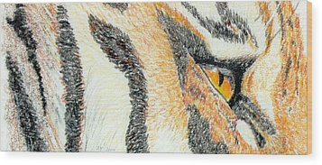 Wood Print featuring the drawing Tiger Amber by Stephanie Grant