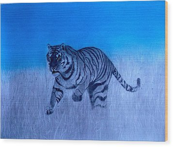 Tiger And Blue Sky Wood Print