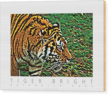 Wood Print featuring the photograph Tiger Bright  Naturally Rare Poster by David Davies